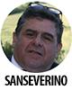 Roberto Sanseverino80
